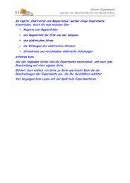Elektrizität und Magnetismus - Klexse - Bungarten