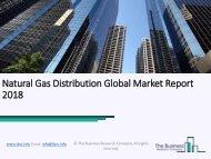 Natural Gas Distribution Global Market Report