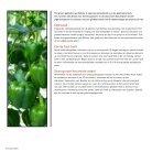 Teeltrichtlijnen E20B.0263 - Page 2