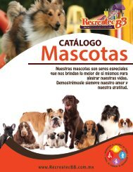 Catalogo Mascotas Recreatec BB