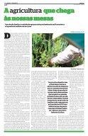 Frutos da Agricultura Familiar em Pernambuco - - Page 2