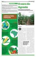 Frutos da Agricultura Familiar em Pernambuco - - Page 3