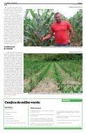 Frutos da Agricultura Familiar em Pernambuco - - Page 4
