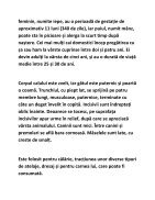 EXEMPLU - Page 2