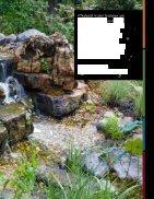 Pond Algaecide - Page 3