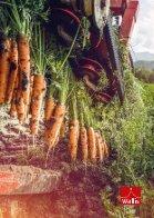 Die Karotten - So schmeck das Wallis - Seite 7