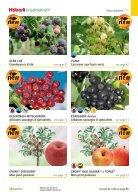 2019 Fruits et petits fruits de Häberli - Page 5