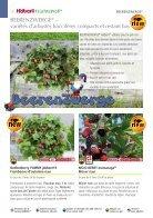 2019 Fruits et petits fruits de Häberli - Page 6