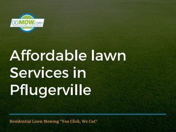 Looking for affordable lawn maintenance in Pflugerville, Texas?