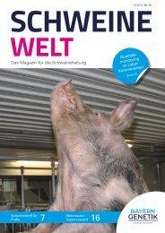 Schweine-Welt-2018-Dezember-web
