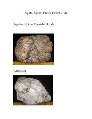 Agate Agates Photo Field Guide