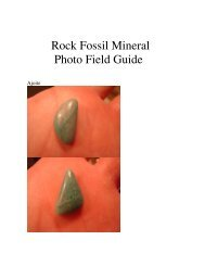 Rock Fossil Mineral Photo field   guide