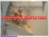 Mold Inspection Fort Lauderdale | Dade Mold Inspectors