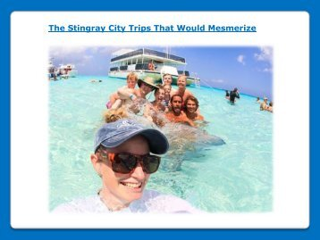 The Stingray City Trips That Would Mesmerize