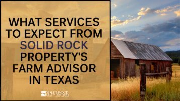 What Services To Expect From Solid Rock Property's