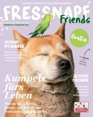FRESS_AT_0119_GesamtPDF_WEB