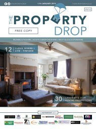 Property Drop Issue 42