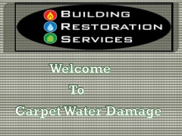 water carpet cleaners in Melbourne