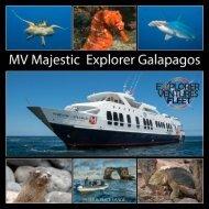 Majestic Galapagos