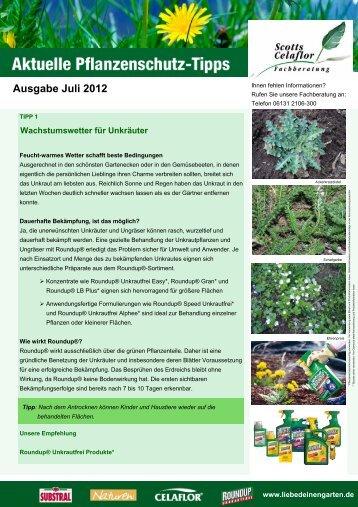 Ausgabe Juli 2012