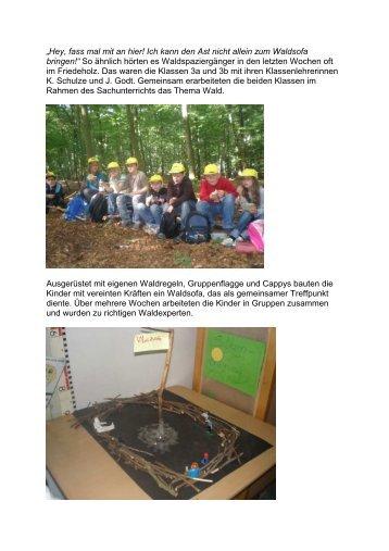 Waldprojekt - Hacheschule Syke