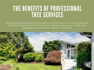The Benefits Of Professional Tree Services