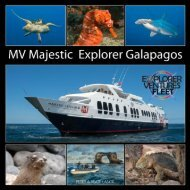 Galapagos Majestic_2019