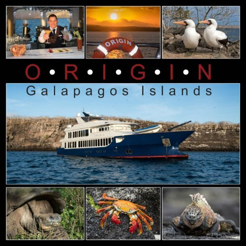 Galapagos Origin 2019
