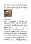 Das Wollschwein - Page 2