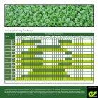 Feldsalat - Page 2