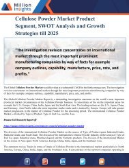 Cellulose Powder Market Product Segment, SWOT Analysis and Growth Strategies till 2025