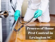 Process of Home Pest Control in Lexington SC by Columbia Certified Pest Control