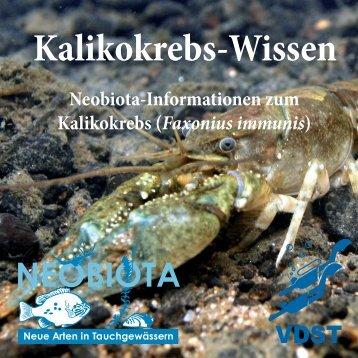 Kaliko Wissen