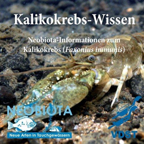 Kaliko-Wissen