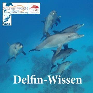 Delfin Wissen