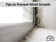 Tips to Prevent Mold Growth by Carolina Water Damage Restoration