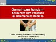 Vortrag Stefan Bräunling [pdf Dokument, 980 KB]