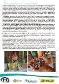 MARIA BENEDITA UMA APAIXONADA PELAS SEMENTES CRIOULAS - Page 2