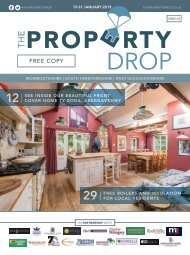 Property Drop Issue 43