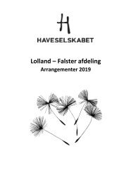 Program 2019 - Lolland Falster