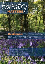 Forestry Matters Galbraith Issue 1 Summer 2018