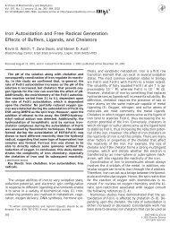 Iron Autoxidation and Free Radical Generation - Toxicology - Utah ...