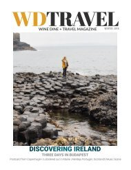 WDT MAGAZINE IRELAND ISSUE WINTER 2018