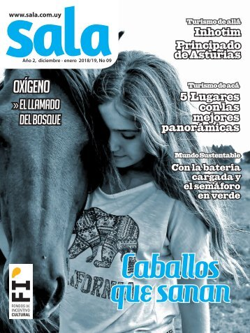 Revista Sala Nro. 09 diciembre/febrero 2018/19