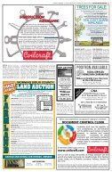 Area Wide Ad-Vertiser - Page 5