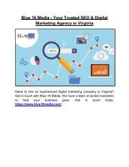 Blue 16 Media - Your Trusted SEO & Digital Marketing Agency in Virginia