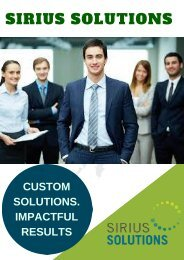 Information About Best Custom Financial Advisory Firm - Sirius Solutions