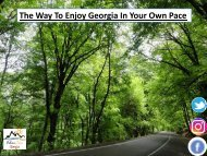 The Way To Enjoy Georgia In Your Own Pace