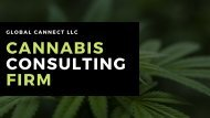 Canna Business Agency | Cannabis Consulting Firm