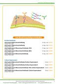 Tokyo Chemical Industriers (TCI) Antibodies and Related Reagents - Page 3